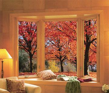 rba windows